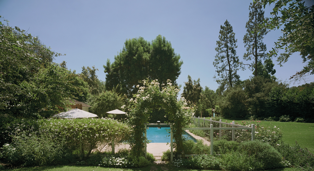 Translite by Richard Lund for Thomas A Walsh of Desperate Housewives backyard